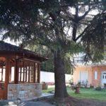 Villa Despina - Неи Пори