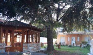 Villa Despina – Неи Пори